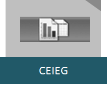ICIEG (2)
